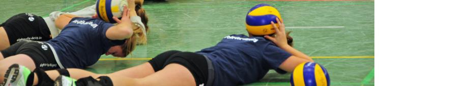 Blau-Gelb Marburg Volleyball: Trainingszeiten und Orte - Überblick
